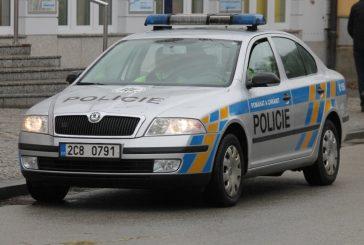 Ze života galerky a policejní práce na Jindřichohradecku (prosinec)