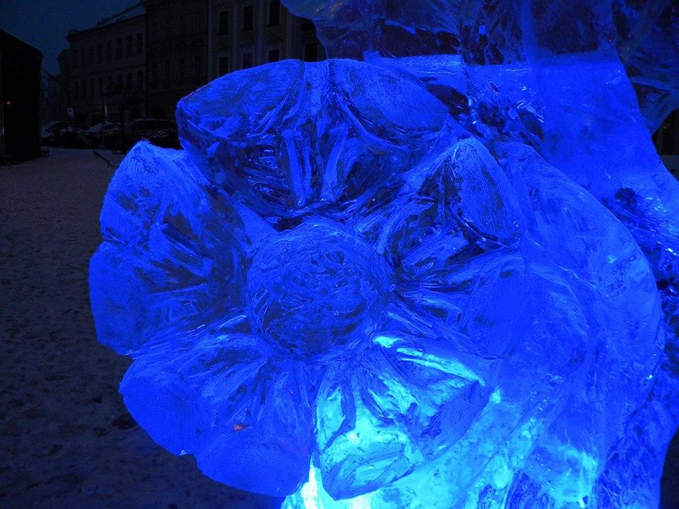 21Vaše fotogalerie z ledového sochání - Autor: Sláva Rejthar