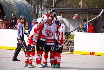 1.národní hokejbalová liga