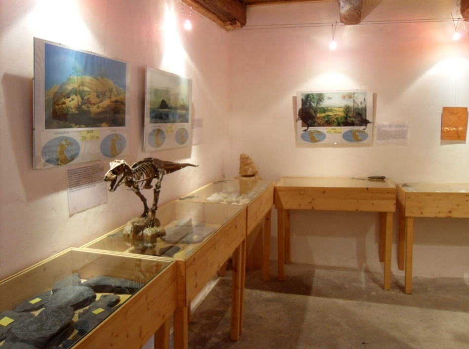 Houbový park - Ráj skřítků - Muzeum fosílií