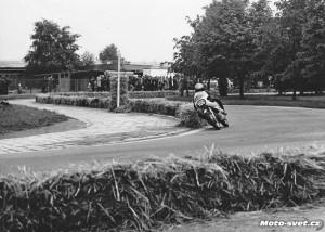 JH 1975: esíčko v parku u n.p.Jitka...