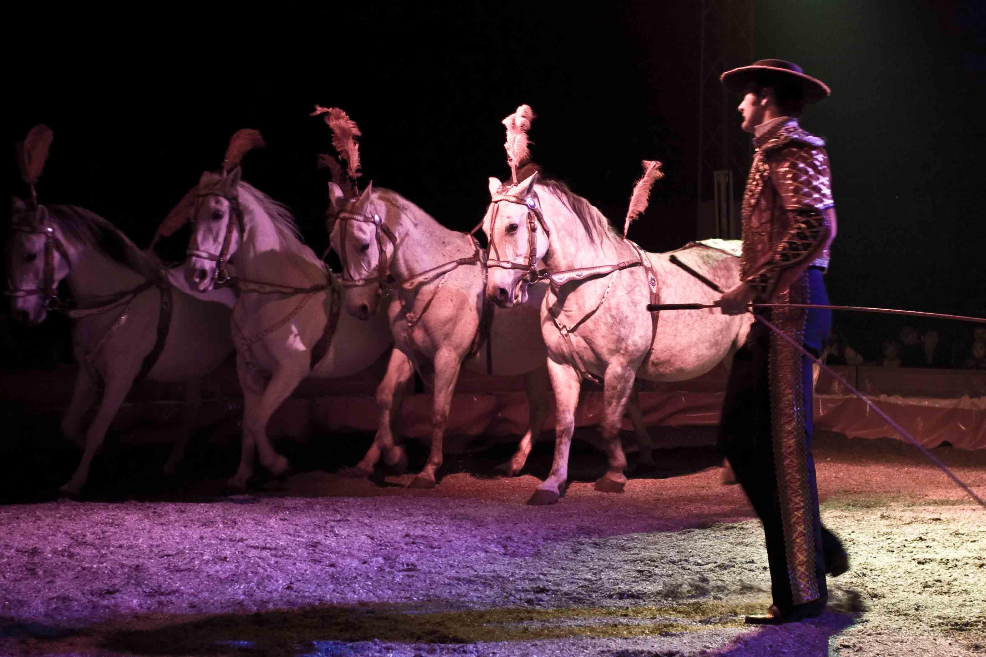 Do Hradce zavítá cirkus Arlet
