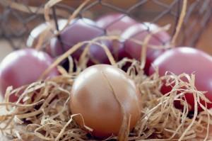 easter-eggs-1231092_1280
