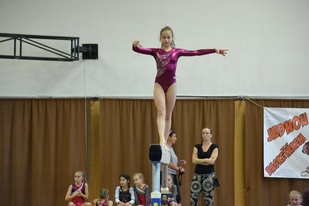 Gymnastky uspěli na šampionátu jižních Čech a Vysočiny