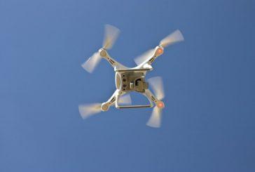 Jak se kácí strom - točeno dronem