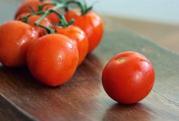 Naturhouse doporučuje: Dvě porce rajčatové omáčky týdně sníží riziko rakoviny
