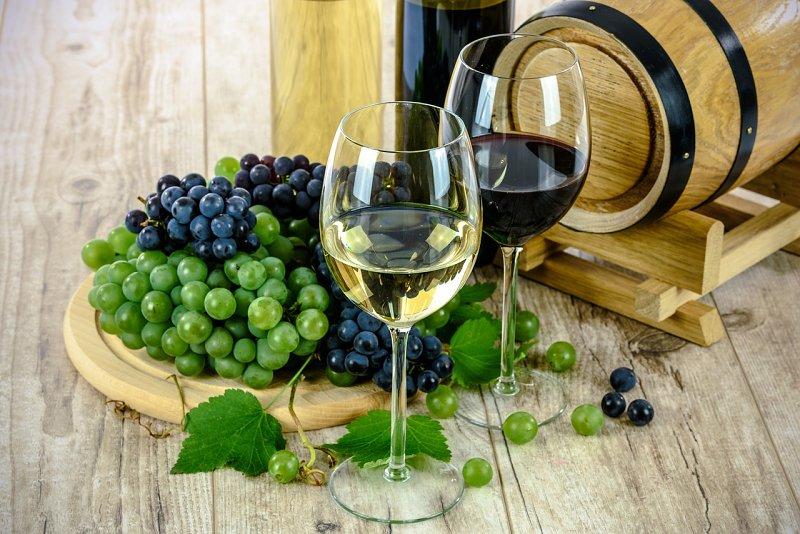 Vína z moravských rodinných vinařství ve vinotéce Dionýsův nektar