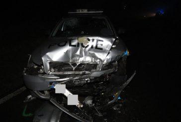 Policie ČR: Šílenec za volantem, sousedský stalking a otrávený dravec