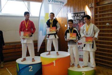 Úspěchy hradeckých karatistů na soutěžích