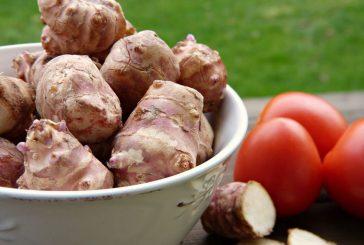 Omrzely vás brambory? Zkuste topinambury, chutnají výborně i syrové (Naturhouse doporučuje)