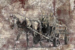 kůň povoz bryčka vůz horse-2372709_1280_WP