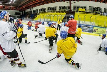 HC Vajgar: soupiska prvního mužstva na novou sezonu