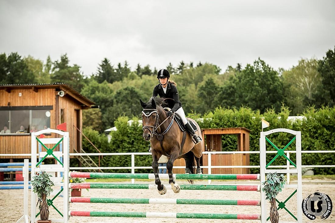 Jezdecke zavody - kone