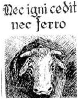 """""""Železné krávy"""" na Deštensku (Z historie Deštné #6)"""