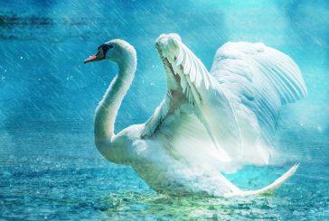 Vodní panny na Karhově (Studená a okolí v pověstech #12)