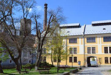 Představte si, že přesně vroce 1910 založila vJindřichově Hradci své dílny pro tkaní tapisérií Marie Hoppe Teinitzerová.