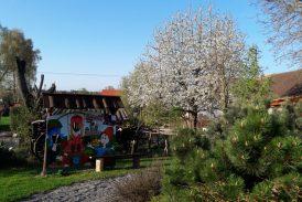 Zajeďte oslavit svátek Země do rozkvetlého Houbového parku v Roseči