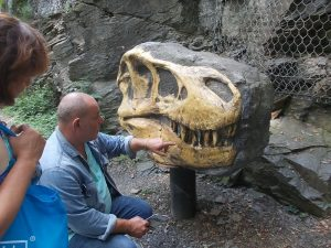Muzeum fosilií v Roseči obohatí replika lebky Tyrannosaura rexe