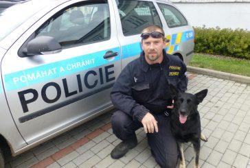 Ze života galerky a policejní práce na Jindřichohradecku (září-říjen 2018)