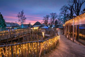 Návštěvníky Zoo Hluboká čeká vánoční nasvícení