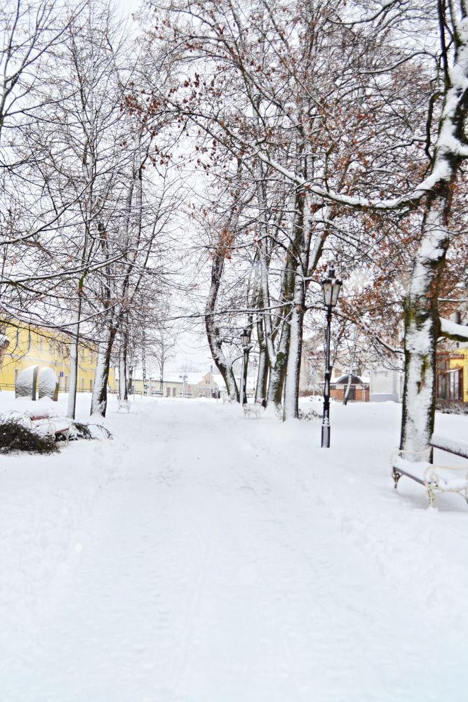 Fotila Amálie: Zasněžený Jindřichův Hradec