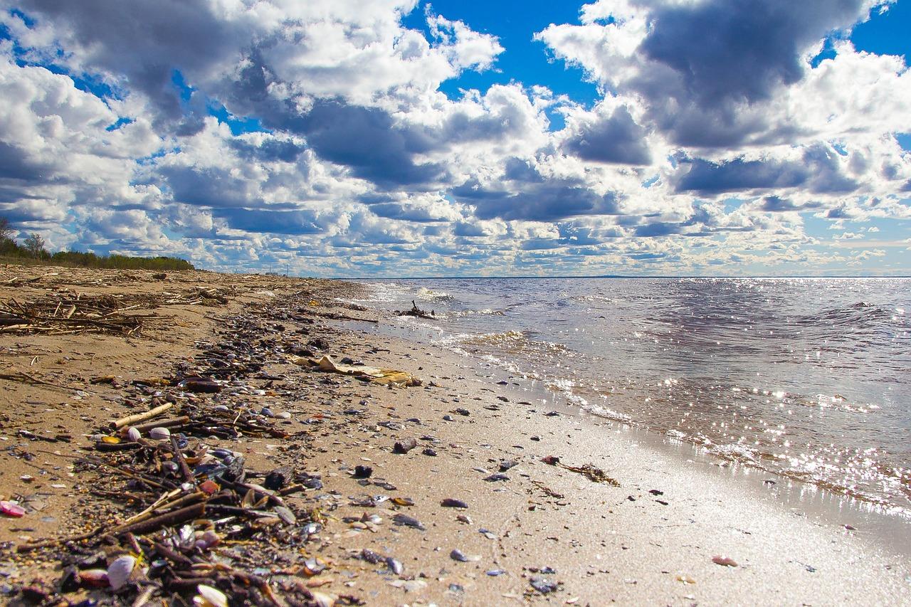 Na Fakultě managementu se bude promítat dokument A Plastic Ocean