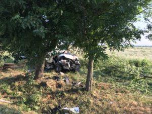Ze života galerky a policejní práce na Jindřichohradecku (květen-červen 2019)