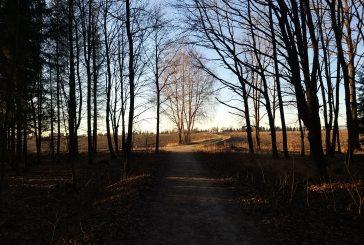 Pěšky po Hradecku #2: Šajba a Jindřiš