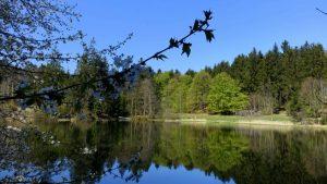 Kraj severu (Česká Kanada vypravuje #11)