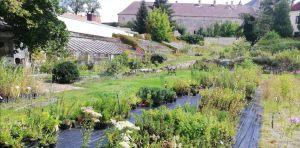 Kraffrova-zahrada