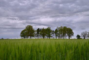Fotila Jana: Květnové fototoulky Jindřichovým Hradcem