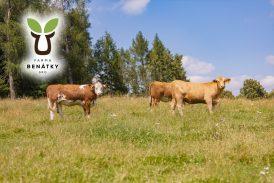Rodinná farma Benátky přijme na HPP muže na pozici farmáře a ženu jako obsluhu penzionu.