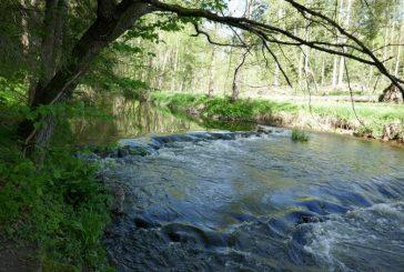 Dobrodružná cesta přírodou po Jindrově naučné stezce